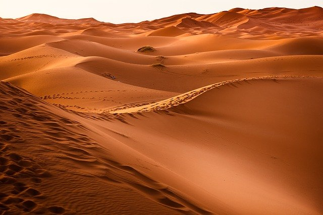 Pustynna Tunezja, czyli wyprawa na Saharę